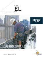 Hazard Profile-Rebar Activity