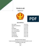Makala Swamedikasi for Jerawat