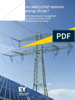 EY Chief Resource Energy Officer Report