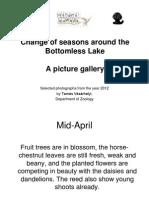 Bottomless_VasarhelyiT.pdf