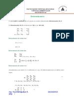 Matrices - Determinantes y Sistemas de Ecuaciones Lineales
