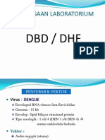 DHF 2013