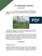 Proyecto de Moringa Oleifera x