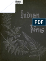 Album of Indian Ferns