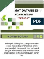 Kombi Botani