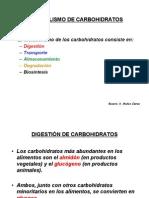 Metabolismo de Carbohidratos2
