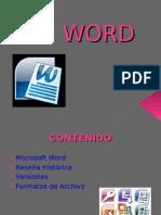 WORD Diapositivas