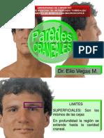 Regiones de Las Paredes Craneales