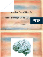 Psicolog C3 ADa 3 1