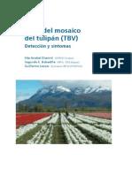 Manual Virustulip