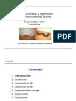 Robótica Modular y Locomoción