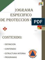Curso Programa de Proteccion c.