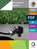 Estrategia Intersecretarial Bioenergeticos