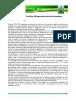 boletin phitonat_bioquimica del suelo_de las glicoproteínas a las glomalinas