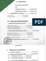 INFORME INTERVENTOR LIQUIDACION 2008 (2)