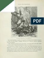 Verne, Jules - 1905 - L'Ile Mystrieuse 244