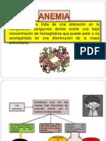 anemia macrocitica no megaloblastica.pptx