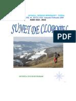 compuneri-iarna-primavara