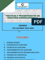 Tecnicas y Procedimientos de Auditoria Gubernament.