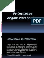 Principios Organizacionales