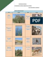Listado de Flora y Fauna Presente en Sistemas Dunares (Julio César)