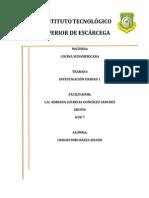 Cocina Sudamericana Selene
