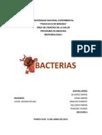 Bacterias Resumen Final