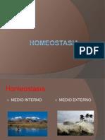 2 Homeostasia