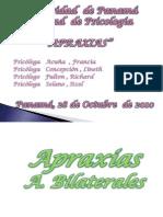104916127 Seminario de Apraxia