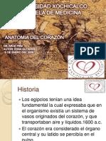 Anatoma de Corazon