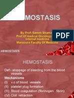 08 Hemostasis