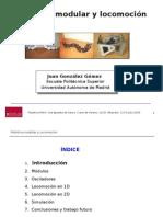 Robótica Modular y Locomoción. UCLM 2009