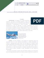 Estructura Principal de Un Avion