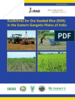 Guidelines for Dry Seeded Rice (DSR) in the Eastern Gangetic Plains of India