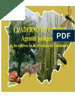 Cuaderno de Campo Agentes Patogenos 2006
