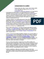 Ciencias Relacionadas Con La Quimica - Copia