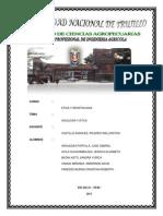 Informe de Etica Grupal 2