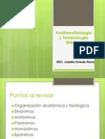 Anatomofisiología y Terminología Médica