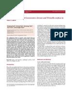 Antifungal Activity of Leuconostoc Citreum and Weissella Confusa in Rice