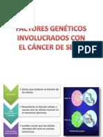 factores geneticos cancer de mama