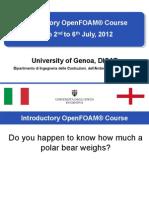 Openfoam User Guide Pdf