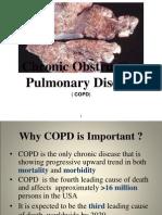 2. Chronic Obstructive Pulmonary Disease New(Er) Version