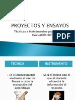 Expo_proyectos y Ensayos