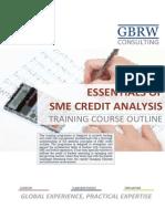 SME+Credit+Assessment+Course+Outline