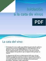 Iniciación CATA DE VINOS