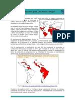 El Calentamiento Global y Sus Efectos-Dengue