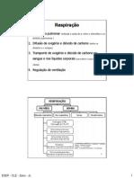 1.- Respiracao RCD1_11_12.pdf