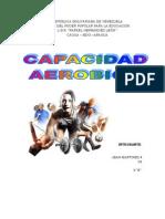 CAPACIDAD AEROBICA