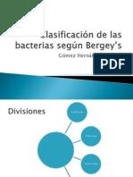 Clasificación de las bacterias según Bergey's
