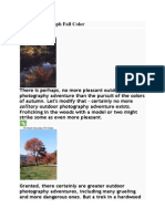How to Photograph Fall Color